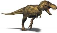Ποιος ήταν ο Τυραννόσαυρος Ρεξ;